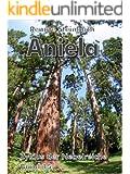 Aniela (Zyklus der Nebelreiche 15)