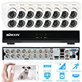 Best 16 Channel Dvrs - KKmoon 16Channel White CCTV Camera Systems;16pcs White Dome Review