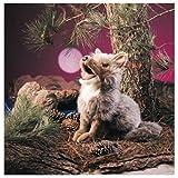 Produktbild von Folkmanis Puppets 2226 - Koyote