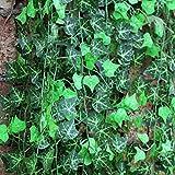 8Fuß 2,5m Girlande, künstlicher Efeu Foliage Green Leaves Fake Aufhängen Vine Pflanze für Hochzeit Party Garten Wand Dekoration 12Stück