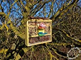 Natural Insect Hotel with Feeder and Wood Bark...