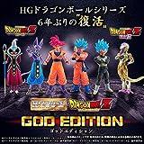 HG Dragon Ball Z GOD EDITION dbz by DBZ