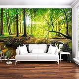 decomonkey | Fototapete Wald 3D 350x256 cm XXL | Tapete | Wandbild | Bild | Fototapeten | Tapeten | Wandtapete | Wanddeko | Wandtapeten | Baum Sonne Grün