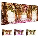 Bilder 100 x 40 cm - Wald Allee Bild - Vlies Leinwand - Kunstdrucke -Wandbild - XXL Format - mehrere Farben und Größen im Shop - Fertig Aufgespannt !!! 100% MADE IN GERMANY !!! - 605612a
