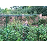 Two Wests Deluxe 6' High Fruit Cage 6' x 18' by Two Wests & Elliott