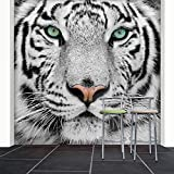 Fototapete White Tiger 274x254 cm Tapete Löwe Raubkatze Schwarz Weiß deco.deals