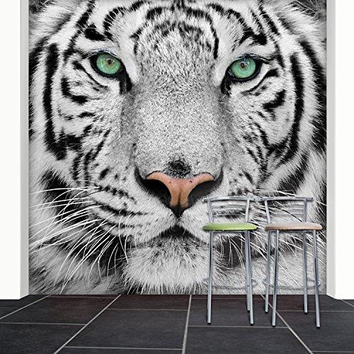 Fototapete White Tiger 274x254 cm Tapete Löwe Raubkatze Schwarz Weiß deco.deals (Tiger White Wandtattoo)