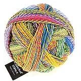 Schoppel-Wolle Zauberball 6-lagig–malerwinkle, mehrfarbig