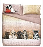 Bassetti Bedding Set Single Bed Dogs & Cats Effect Bedspread