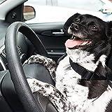 Hunde Sicherheitsgurt, Hepooya Auto SicherhHunde Sicherheitsgurt für Hunde Autogurt-Adapter für höchste Sicherheit, Hundegurt Sicherheitsgeschirr verstellbarem Ruckdämpfer, Nylon 53 bis 90 cm Einstellbar, Passend für alle Hunderassen - 7