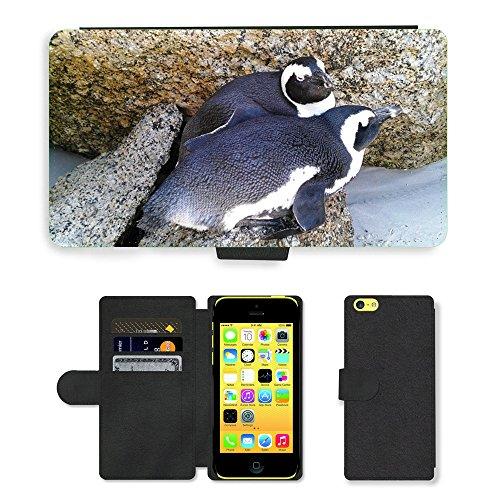 Just Mobile pour Hot Style Téléphone portable étui portefeuille en cuir PU avec fente pour carte//m00139422bolders Plage Pingouins Afrique du Sud//Apple iPhone 5C