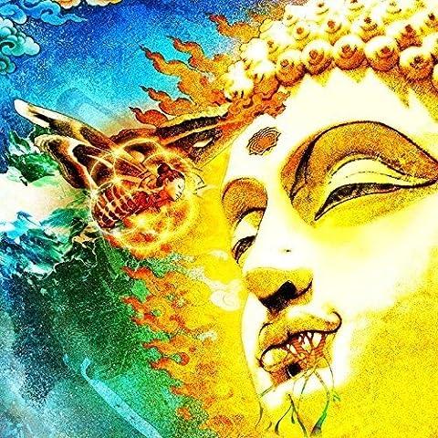 On Her Journey To The Sun (Gatefold black 2LP+CD) [Vinyl LP]