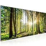Bilder Wald Landschaft Wandbild 100 x 40 cm Vlies - Leinwand Bild XXL Format Wandbilder Wohnzimmer Wohnung Deko Kunstdrucke Grün 1 Teilig -100% MADE IN GERMANY - Fertig zum Aufhängen 503812b