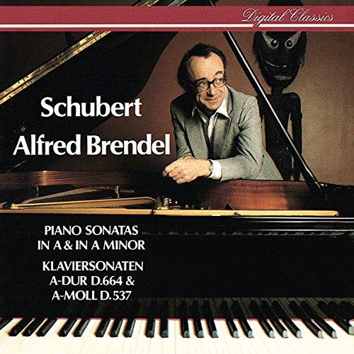 Schubert: Piano Sonata No.13 i...
