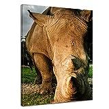Kunstdruck - Nashorn und Giraffe - 40x50 cm - Bilder als Leinwanddruck - Wandbild von Bilderdepot24 - Tierwelten - exotische Tiere - afrikanische Tiere im Sonnenuntergang