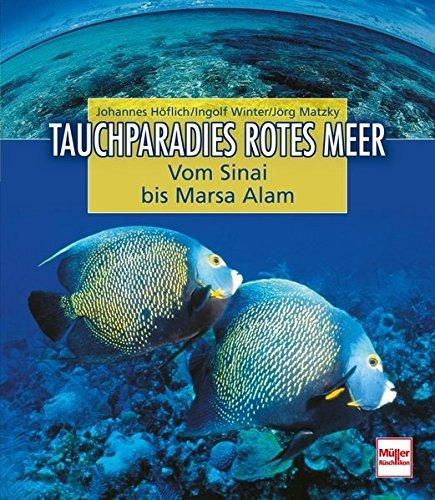 Tauchparadies Rotes Meer: Von Sinai bis Marsa Alam