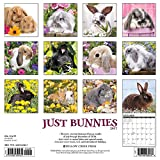 Image de Just Bunnies 2017 Calendar