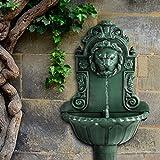 Jago - Fuente de pared con cabeza de león decorativa (inclu. bomba de agua y manguera) en color verde