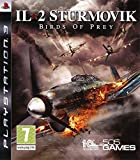 IL 2 Sturmovik : birds of prey