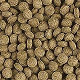 Tropical BL Vege Tablet B Pflanzenfutter Hafttabletten, 1er Pack (1 x 1 kg)
