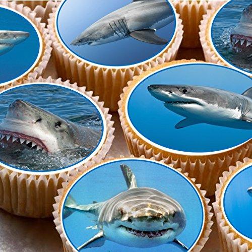 Print4you 24Kuchen Topper 4cm auf Zuckerguss Cupcake Bilder-ND2Sharks (Toppers Shark Cupcake)