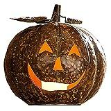 SIDCO Großer Metall Kürbis Herbst Deko Halloween Windlicht Kupfer Teelicht Halter
