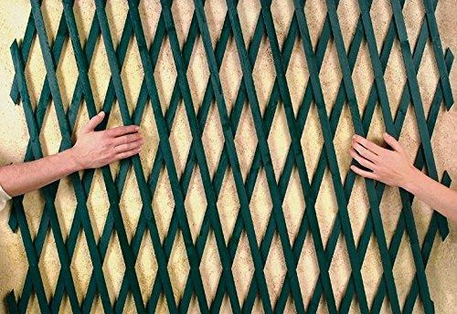 Intermas - INTERMAS - Treillis extensible en bois - Vert 1 x 2 m TRELLIWOOD