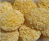 Champignon à champignon blanc Tremella Premium 300 grammes