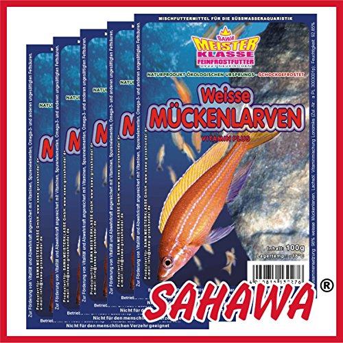 SAHAWA Weiße Mückenlarven, Frostfutter 5X Blister a 100g + 1 Blister Daphnien gratis, verpackt mit Trockeneis -78°C, Aquarium, Aquaristik, Fischfutter, Frostfutter -