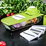 Gemüsehobel von Baban 9-in-1 Multi-funktion Gemüseschneider Kompakter Mandoline Gemüsehobel, Obst- und Käse-Cutter, 5 austauschbare Klingen + Lebensmittelbehälter + Stoßbrett + Gemüsehalter + Blade Aufbewahrungsbox