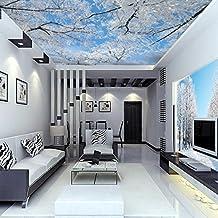Best Huangyahui Wandbilder D Stereo Himmel Decke Zimmer Tapete Wohnzimmer  Qiangbu Hintergrund Landschaft Schnee Wallpaper Film With Tapeten Fr Die  Decke.