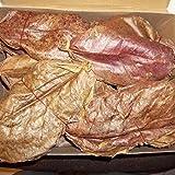 Catappa 500g soit environ 200 grandes feuilles