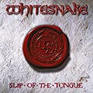 Slip of the Tongue [Import allemand]