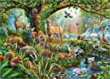 Poster 40 x 30 cm: Waldtiere von Adrian Chesterman/MGL Licensing - Hochwertiger Kunstdruck, Kunstposter