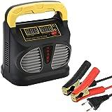 URAQT Caricabatterie e Mantenitore Auto 10A 12V/24V, Intelligente Automato Caricabatterie Manutentore per Auto, Moto, ATV, Ba