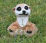 Statue de jardin suricate grabend nourrisson furets