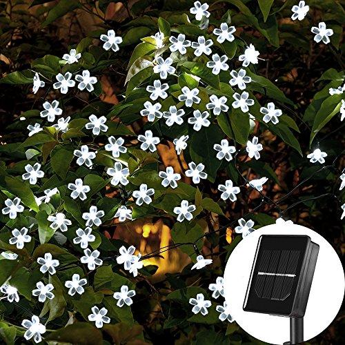 Solar Lichterkette - 23ft außenlichterkette wasserdicht mit lichtsensor, 7 Meter 50er LED Solar Blumen Lichterkette für Außen und innen Deko (weiß, 50Leds)