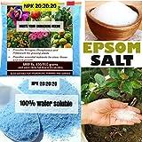 #7: NPK Fertilizer (300 gm) + Epsom Salt (150 gm) -