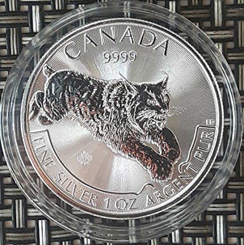Canada Luchs 2017 Predator 1 Unze Silber Münze Silbermünze 1 oz silber in Münzkapsel Silber Münzen 1 Oz