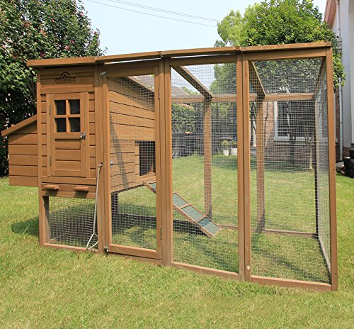 Pets imperial® blenheim pollaio / gabbia con recinto lungo de 8ft / 2.5m e tetto i rete galvanizzata adatto per 4 a 6 uccelli secondo le loro dimensioni