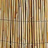 Windhager 06523 Schilfrohr Sichtschutz natur beige 1x 5m