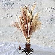 Total 60 Pcs | 15 Pcs White Pampas & 15 Pcs Brown Pampas & 30 Pcs Reed Grass/Natural Dried Pampas Gras