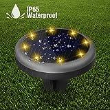 Solarleuchte Garten, Maxchange 8 LEDs IP65 Wasserdicht Solar Bodenleuchte mit Schaltungsschutz, Außenleuchte für Garten Deko Weg Landschaft Auffahrt [Auto On/Off] [Aufgerüstet] [4 Pack] Vergleich
