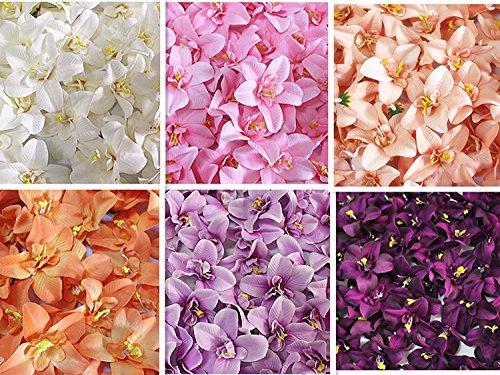 Lanlan Glamorous 318cm Kunstblumen, Cymbidium Orchidee, Blume für Jäten Party Home U besten Preis Geschenk Reis Weiß (Halloween Pinterest Outdoor Dekoration)