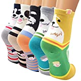 Ambielly calcetines de algodón calcetines térmicos Adulto Unisex Calcetines (5 números)