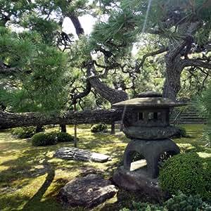 Tableau Nature Jardin Japonais