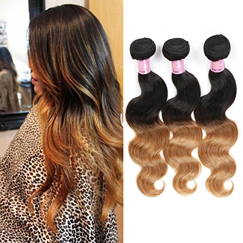 In Bundles Extensions Hair (100% Unprocessed Human Hair Weaving Weft Hair Extension 3 Bundle Ombre Body Wave Brazilian Virgin Remy Human Hair Extensions Natural Black to Brown 80g/bundle 14