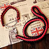 Mittlere Und Große Hundekette Jinmao Labrador Husky Startseil Hundeleine Halsband Heimtierbedarf (Farbe : Red-1, größe : S)