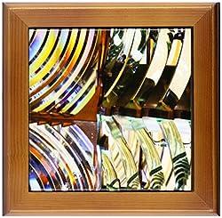 3dRose ft_88306_1 Lens of Farallon Island Lighthouse California Chuck Haney Framed Artwork