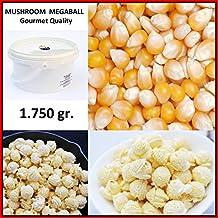 Palomitas de Maiz MUSHROOM MEGABOLA Redondas XXL 1:60 Volumen - Calidad Gourmet - Cubo
